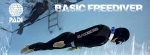 PADI Basic Freediver